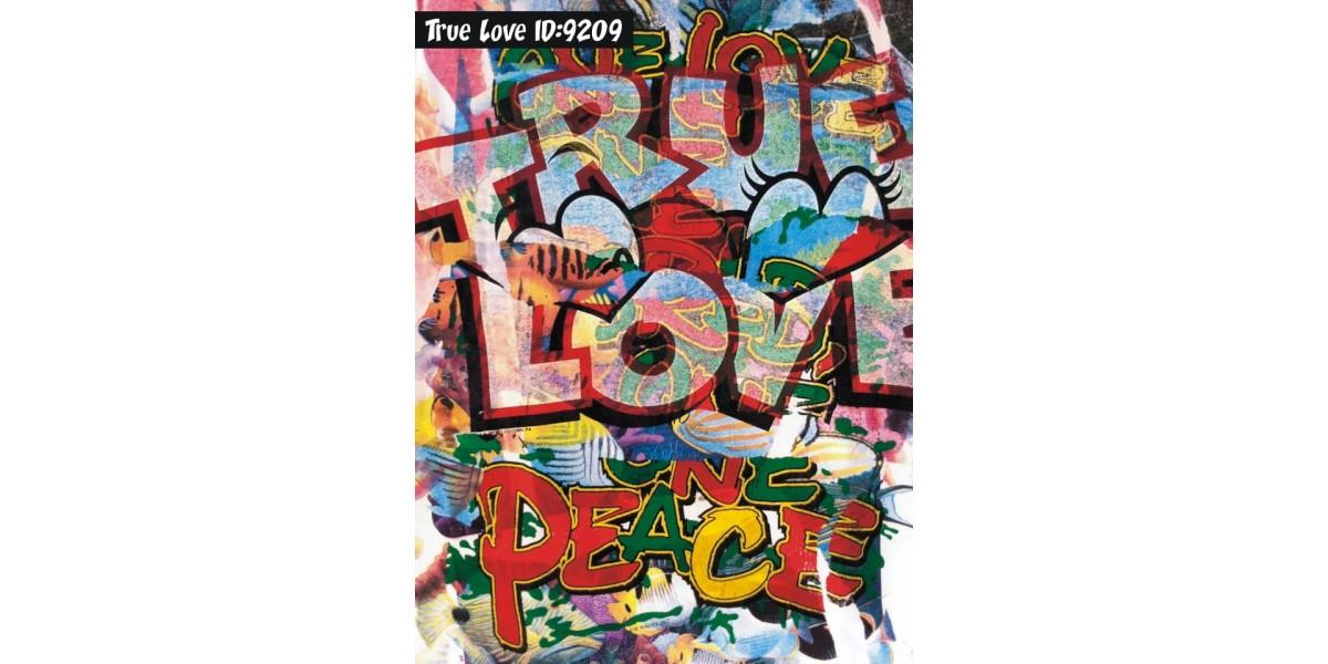 True Love Art Shirt Sted