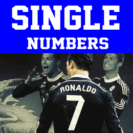 Single Iron-on Numbers