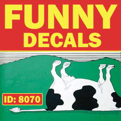 Funny Iron-on Decals