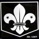 9 WHITE Boys Scouts Iron-on