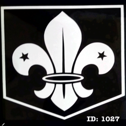 9 WHITE Boys Scouts Iron-on