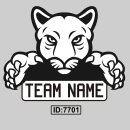 Team Logos Iron-on Transfers