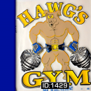 Hawgs Gym T-Shirts